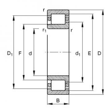 110 mm x 240 mm x 50 mm  FAG NJ322-E-TVP2 cylindrical roller bearings