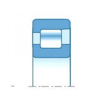 17,000 mm x 40,000 mm x 12,000 mm  NTN NF203 cylindrical roller bearings