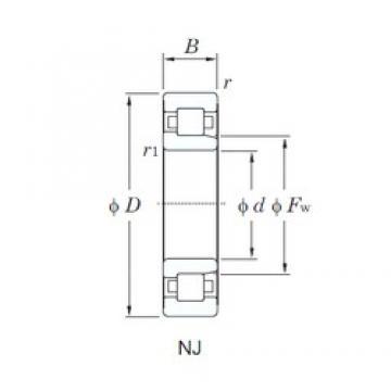 110 mm x 240 mm x 50 mm  KOYO NJ322R cylindrical roller bearings