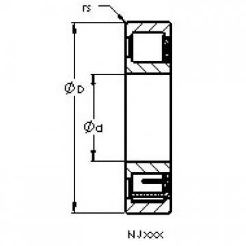 AST NJ203 EM6 cylindrical roller bearings