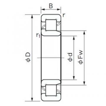 110 mm x 240 mm x 50 mm  NACHI NJ 322 cylindrical roller bearings