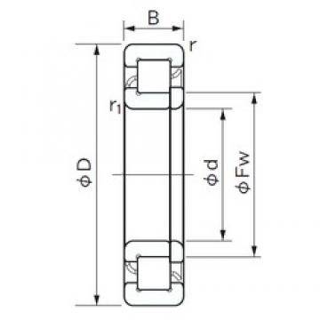 17 mm x 40 mm x 12 mm  NACHI NUP 203 cylindrical roller bearings