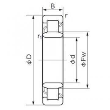 110 mm x 240 mm x 50 mm  NACHI NU 322 cylindrical roller bearings