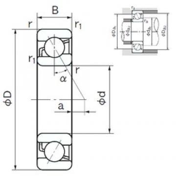 17 mm x 40 mm x 12 mm  NACHI 7203B angular contact ball bearings