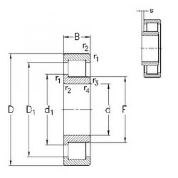 110 mm x 240 mm x 50 mm  NKE NJ322-E-TVP3 cylindrical roller bearings