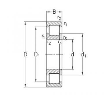 110 mm x 240 mm x 50 mm  NKE NUP322-E-MPA cylindrical roller bearings